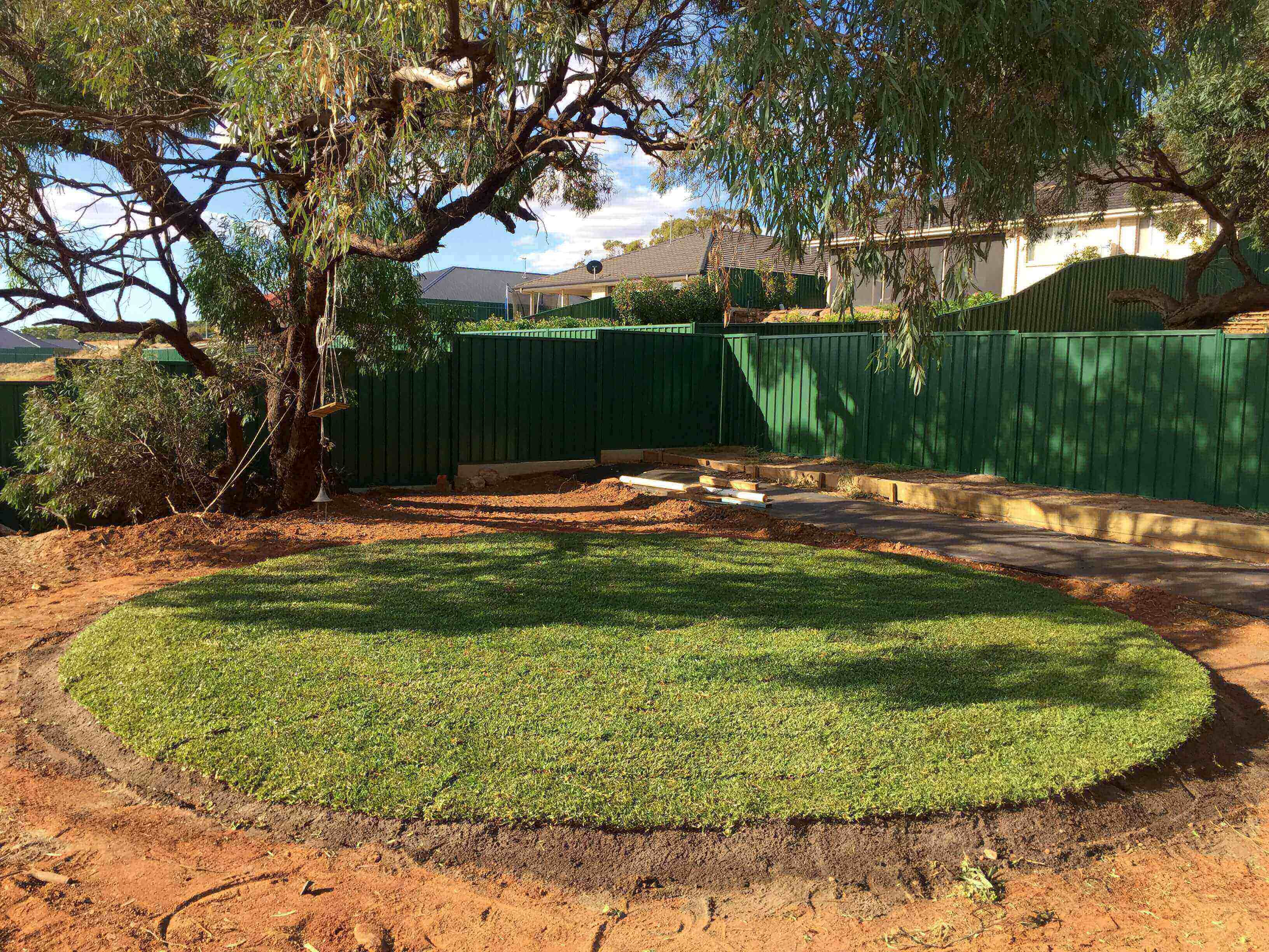 Para Hills - We can landscape around even those big tough tree guys too